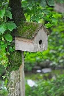 木に掛かっている巣箱