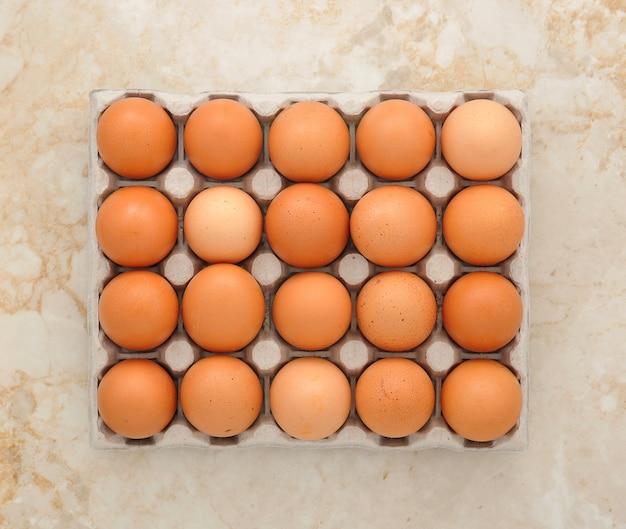 紙の包装の卵
