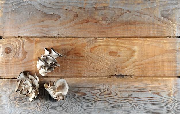 素朴な木製のヒラタケ