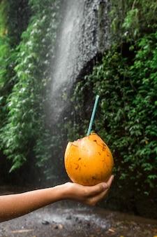女性は滝の横にココナッツの飲み物を手に保持します。