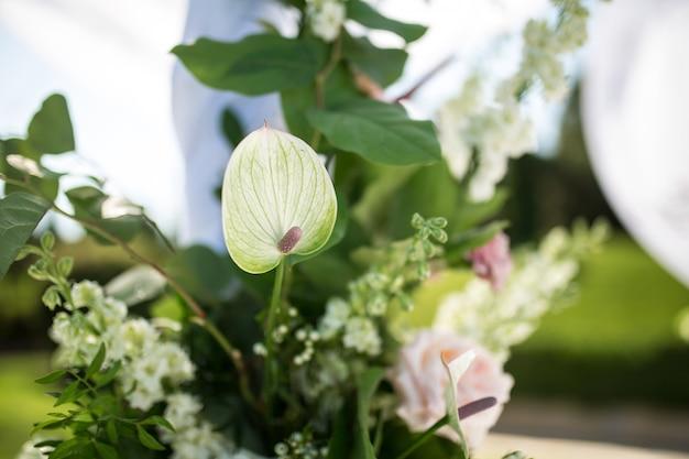 美しい発信結婚式を設定します。ロマンチックな結婚式、ユダヤ人のフパ、屋外の芝生の結婚式。結婚式の装飾。ハートの形をしたプレゼント用のピンク色の箱はテーブルです。
