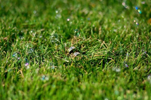 芝生の上の結婚指輪のペア