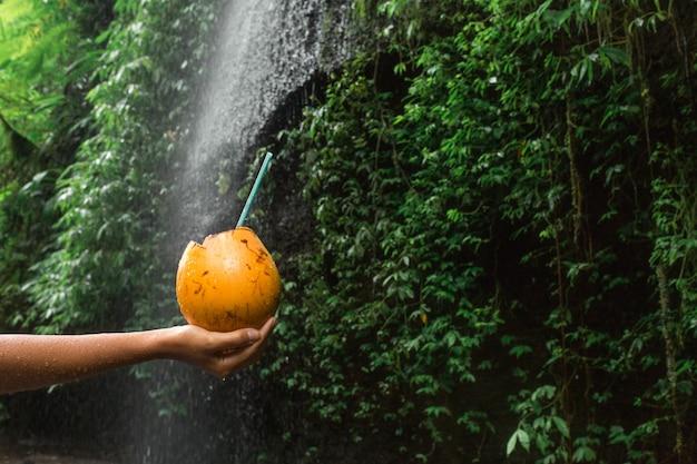 女性は滝の横にあるココナッツの飲み物を手に保持します。