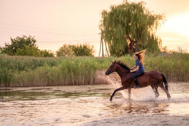 浅い湖で馬に乗る若い女性。馬は日没時に水の上を走ります。馬と一緒に気をつけて歩きましょう。強さと美しさ