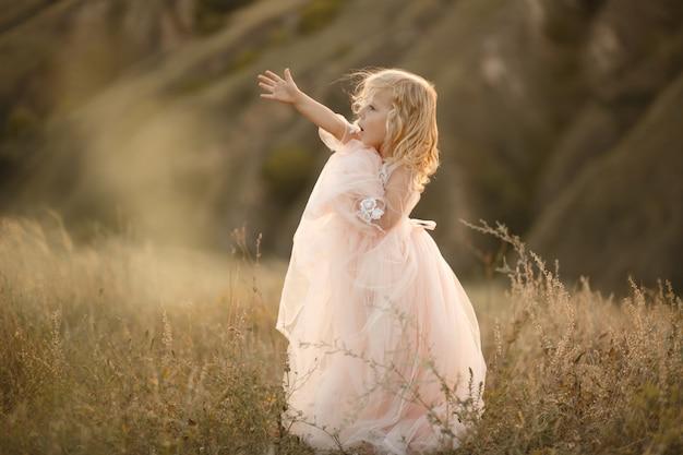 Портрет красивой маленькой принцессы девушки в розовом платье. позирует в поле на закате