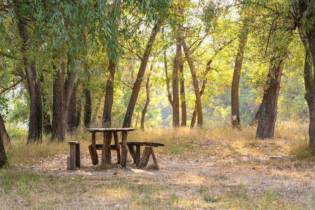 Стол и две скамейки из грубого бревенчатого дома. зона отдыха в лесу