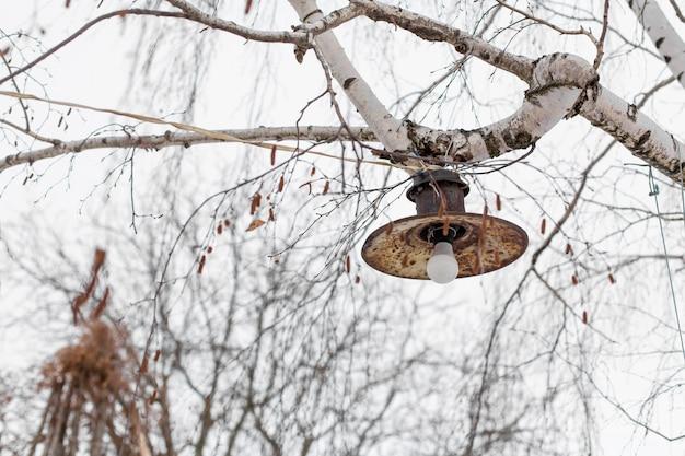 Бедность и разруха. ржавый ржавый уличный фонарь прикручен к ветке дерева