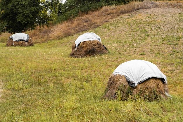畑に刈った草が積み上げられています。セロハンで覆います。