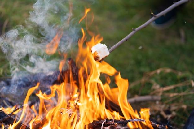 キャンプファイヤーでマシュマロを揚げる