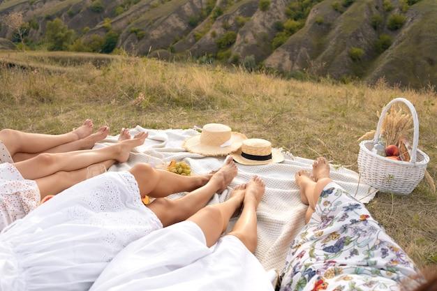 夏のピクニックでリラックスした女性の友人の会社。夏の田舎風ピクニックコンセプト。