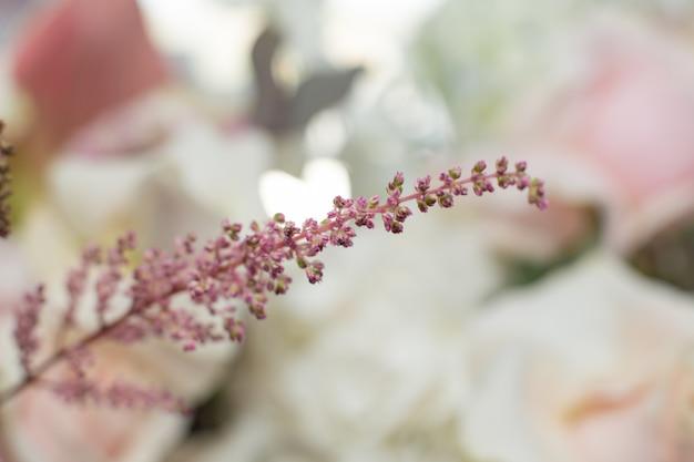 マクロ繊細なピンクの花の枝。結婚式の新鮮な花の装飾