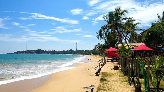 Песчаный не переполненный пляж с пальмами у океана