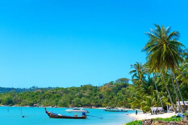 熱帯のビーチの風景。完璧な白い砂、緑のヤシの木と青い水。熱帯地方での旅行とリラクゼーション
