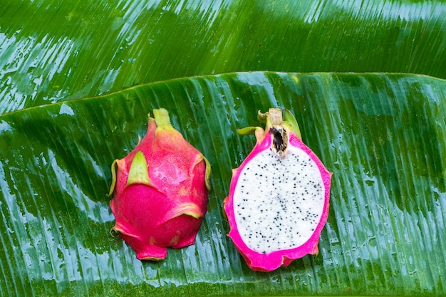 濡れた緑の葉に熟したドラゴンフルーツ。ビタミン、果物、健康食品