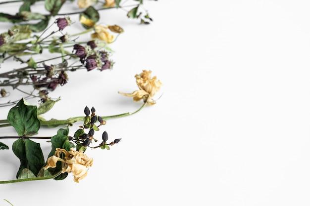 白い壁にしおれた花の花束