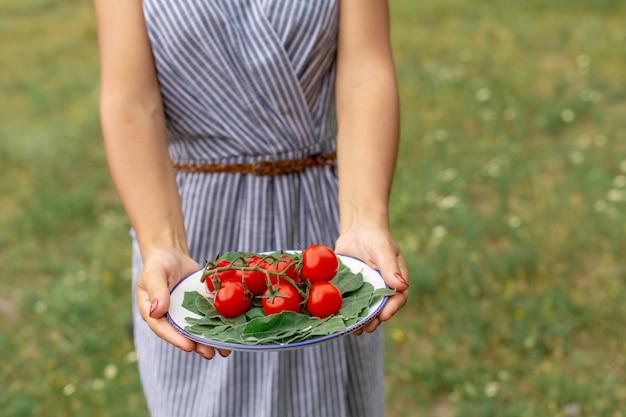 女性は、フレッシュトマトとプレートを保持します。森の背景でピクニックのための野菜プレート