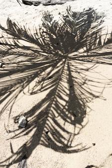 Тень пальмы на песчаном пляже. концепция отдыха у моря