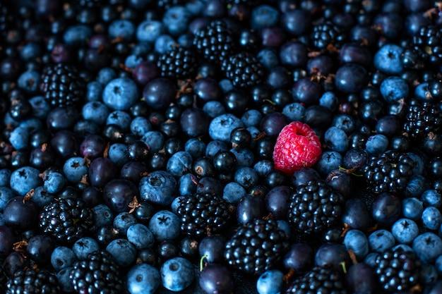 独自性のコンセプト。他の人とは違います。桑の実のカラントとブルーベリーのブラックベリーのヒープミックスの赤いラズベリー