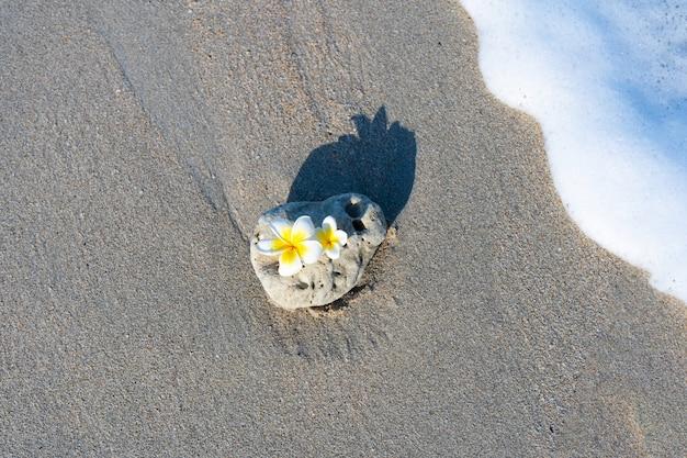 興味深い滑らかな形の小さな石が、波に打ち寄せられてビーチに打ち寄せられます。海のコンセプトによる穏やかでリラックス