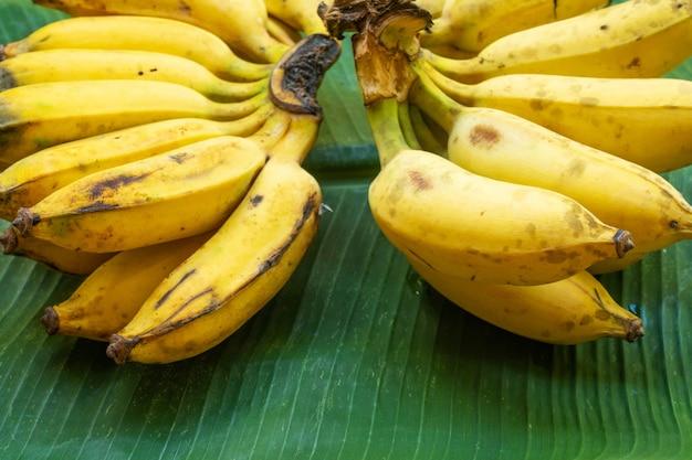 緑のバナナの葉に黄色のバナナの束