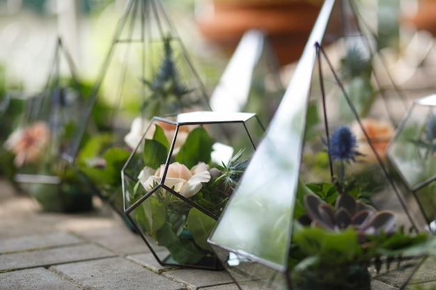 Флорариум со свежими сочными и розовыми цветами