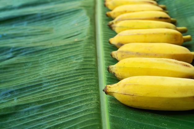 Плоские лежал макет желтых бананов на зеленых банановых листьев. эко еда