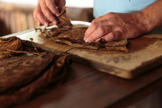 キューバのヴィニャーレスの典型的な農場でタバコの葉巻を作る