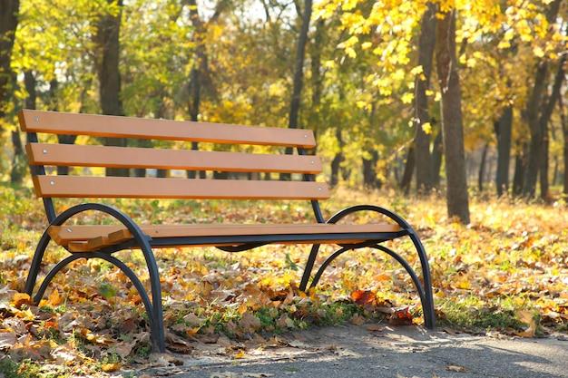 秋の公園で空の木製ベンチ