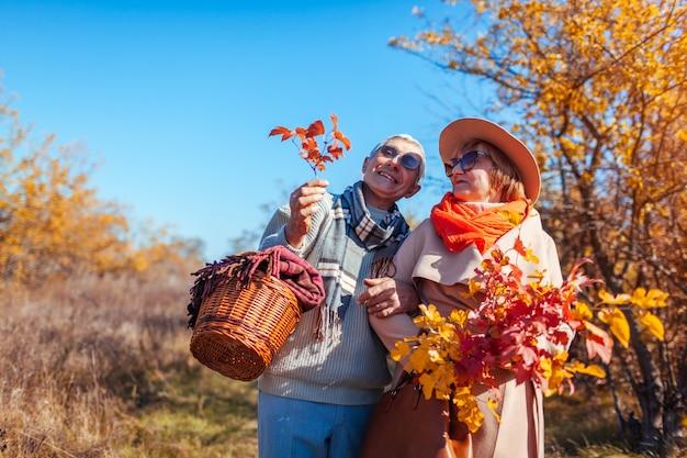 秋の森を抱いて、屋外で冷やして歩く年配のカップル