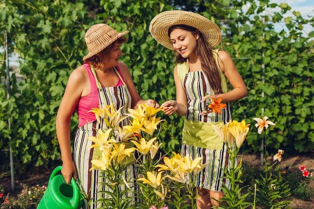 年配の女性と彼女の娘のユリの花の世話をして庭で花を集める
