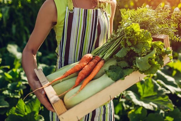 新鮮な野菜で満たされた木製の箱を保持している若い農夫
