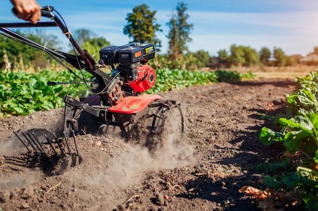 土壌耕作とジャガイモ掘りのために小さなトラクターを運転する農夫。
