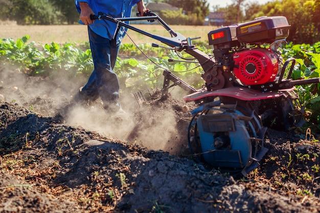 土壌耕作とジャガイモの掘削のために小さなトラクターを運転する農家。秋の収穫ジャガイモ狩り