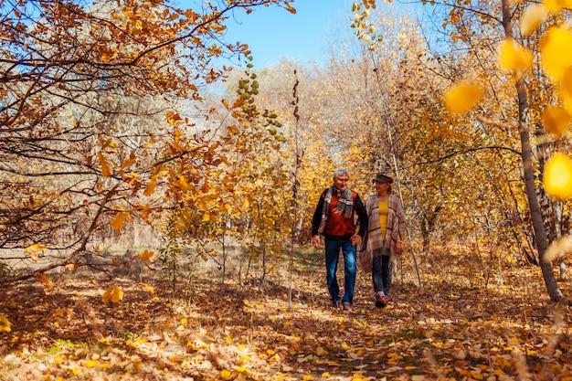 秋のアクティビティ。秋の公園で歩いている年配のカップル。中年の男性と女性を抱き締めて屋外