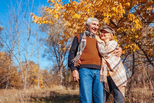 秋のシーズン。秋の公園で歩いている年配のカップル。中年の男性と女性を抱き締めると屋外でリラックス