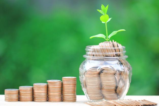 コインのお金と緑色の背景でガラス瓶の上に成長している植物
