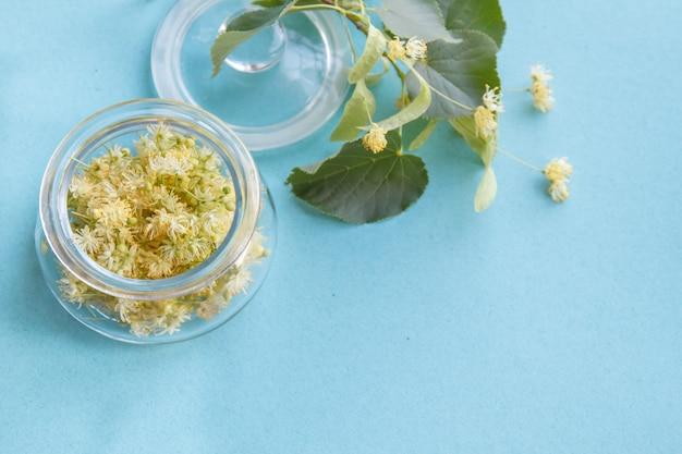 黄色のシナノキの花