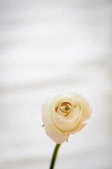 結婚指輪、白いバラの上の金