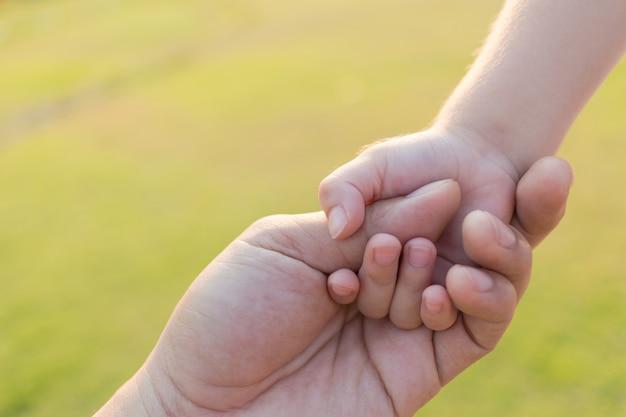 Отец и сын держа рука об руку на саде внешнем.