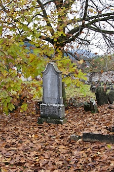 旧ユダヤ人墓地