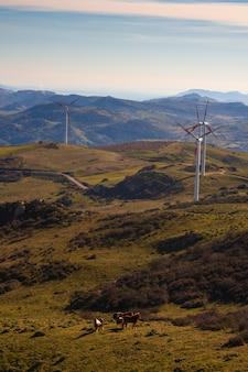 シチリアの田舎の風車のビュー
