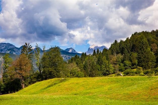 ボーヒニのスロベニアの風景