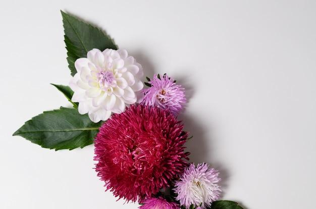 Творческий фон с цветами хризантемы и георгины. цветочная рамка плоская планировка