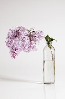 ガラス瓶の中のライラックの枝