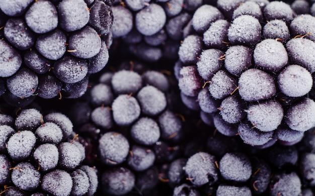 つや消しブラックベリーの写真をクローズアップ。選択された果実