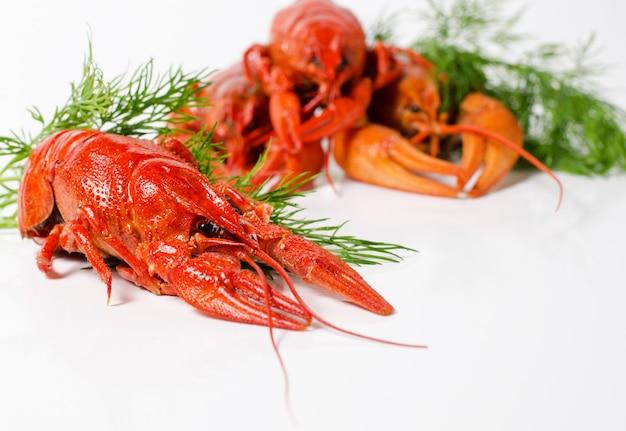 Морепродукты, красные вареные раки. вид закусок к пиву.