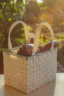 Свежий органический баклажан в корзине на деревянном столе в саде. здоровое питание овощи на салат. хороший урожай. крупный план.
