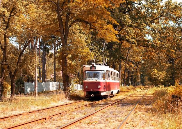 Красный ретро трамвай в волшебный глубокий солнечный красочный лес. удивительный естественный осенний фон