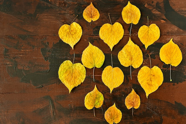 木製のテーブルこんにちは秋に黄色の紅葉