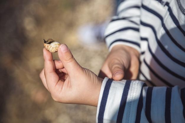 子供の手の中のカタツムリ